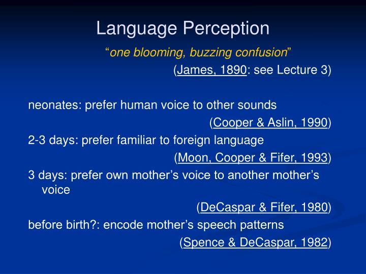 Language Perception