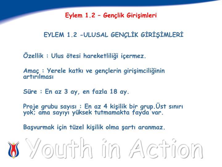 Eylem 1.2 – Gençlik Girişimleri