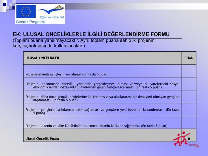 EK: ULUSAL ÖNCELİKLERLE İLGİLİ DEĞERLENDİRME FORMU