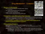 drug metabolism oxidation3
