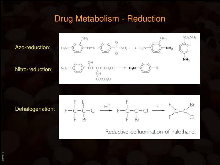Drug Metabolism - Reduction