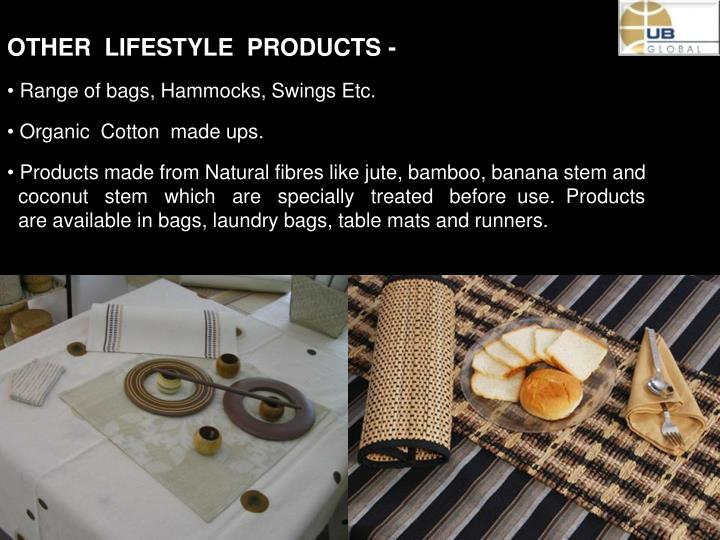 OTHER  LIFESTYLE  PRODUCTS -
