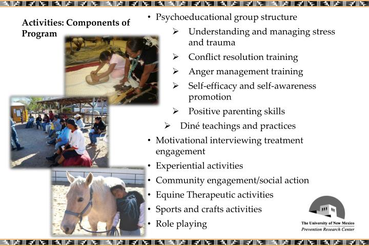 Activities: Components of Program
