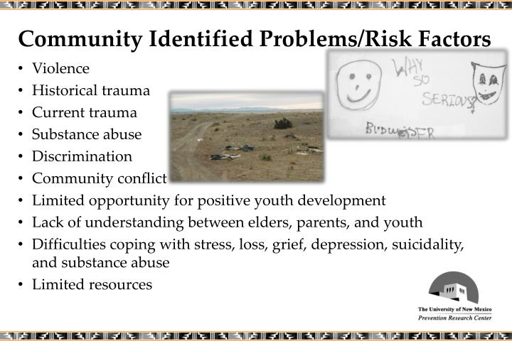 Community Identified Problems/Risk Factors