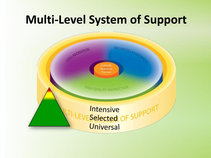 Multi-Level System of Support