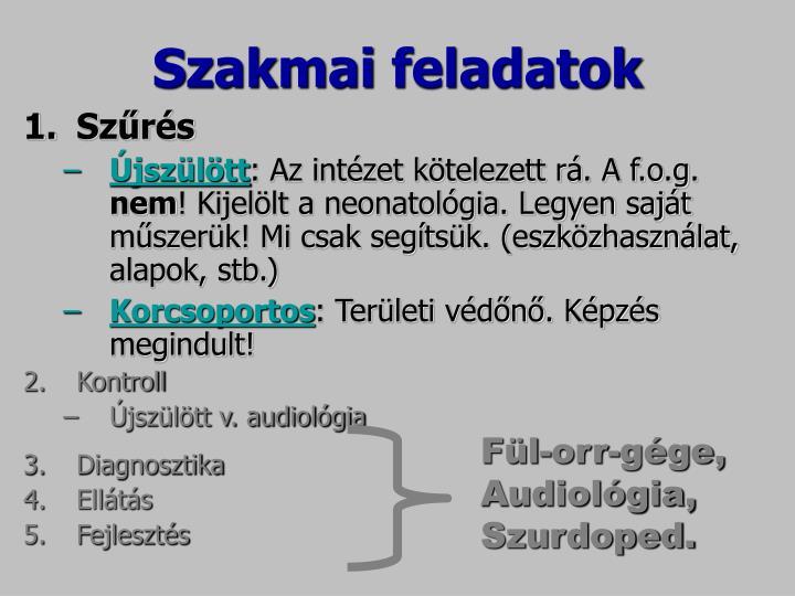 Szakmai