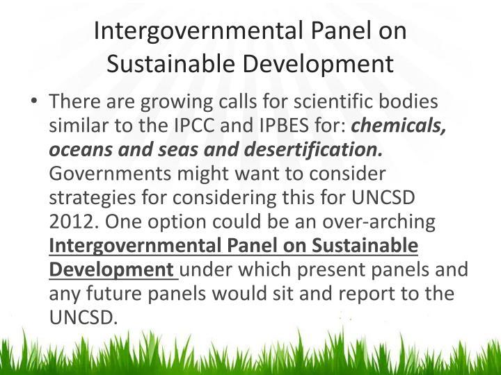 Intergovernmental Panel on Sustainable Development