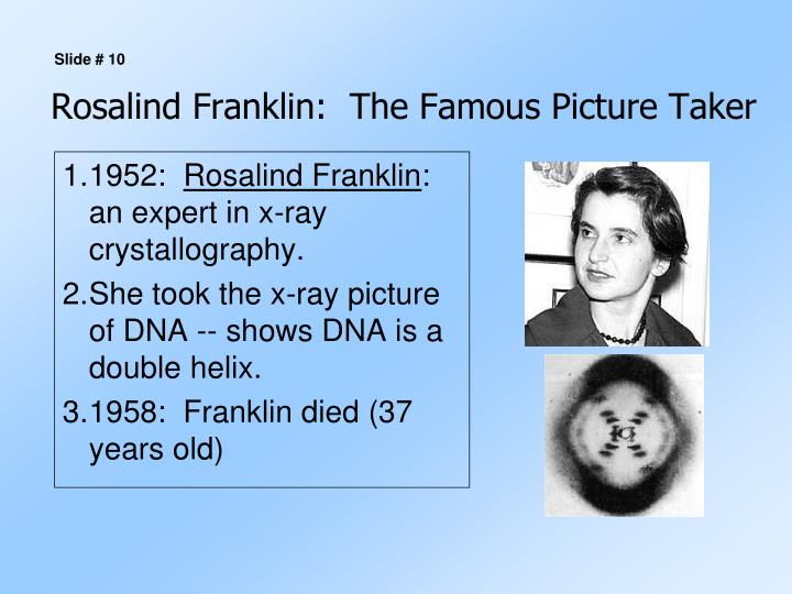 Rosalind Franklin:  The Famous Picture Taker