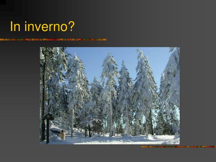 In inverno?