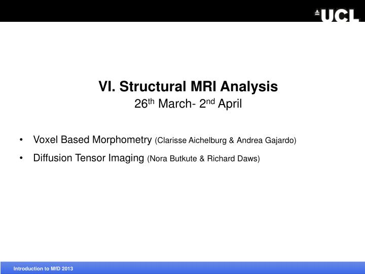VI. Structural MRI Analysis