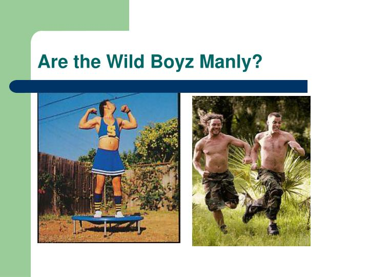 Are the Wild Boyz Manly?