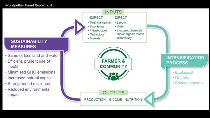 Montpellier Panel Report 2013