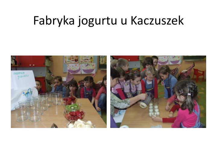 Fabryka jogurtu u Kaczuszek