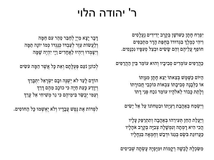 ר' יהודה הלוי