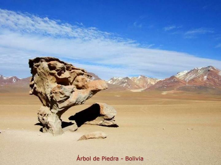 Árbol de Piedra - Bolivia