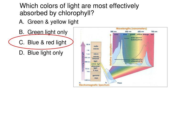 Green & yellow light
