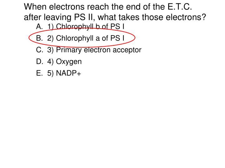 1) Chlorophyll b of PS I