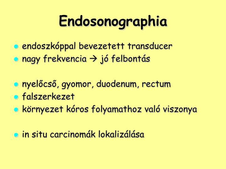Endosonographia