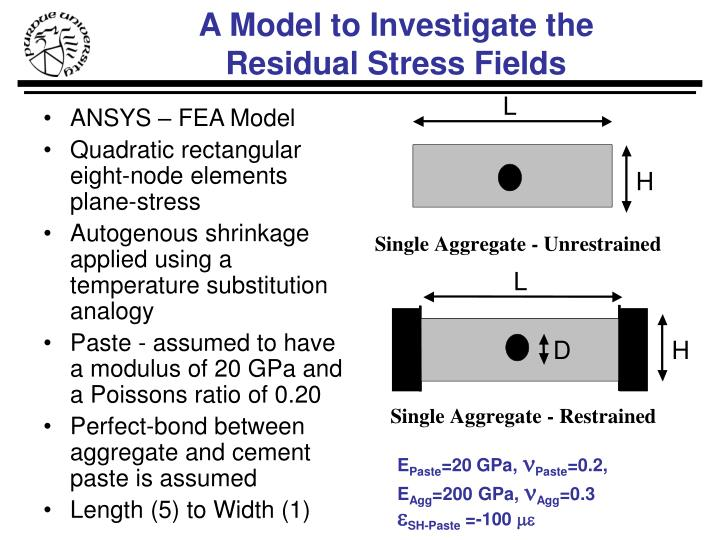 ANSYS – FEA Model