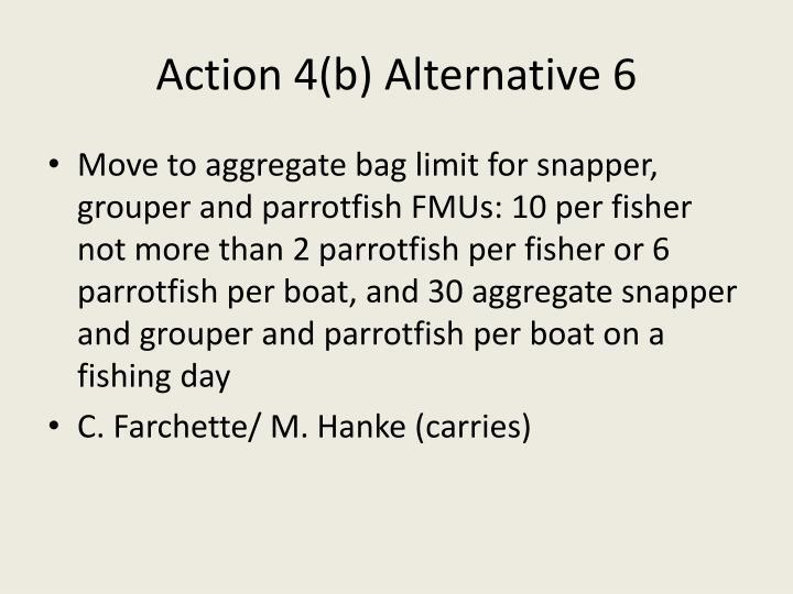 Action 4(b) Alternative 6