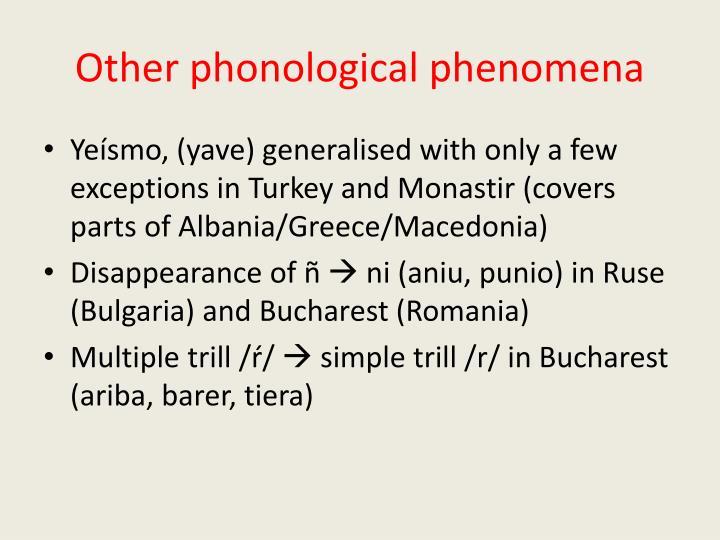 Other phonological phenomena