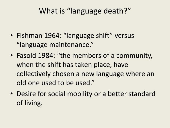 """What is """"language death?"""""""