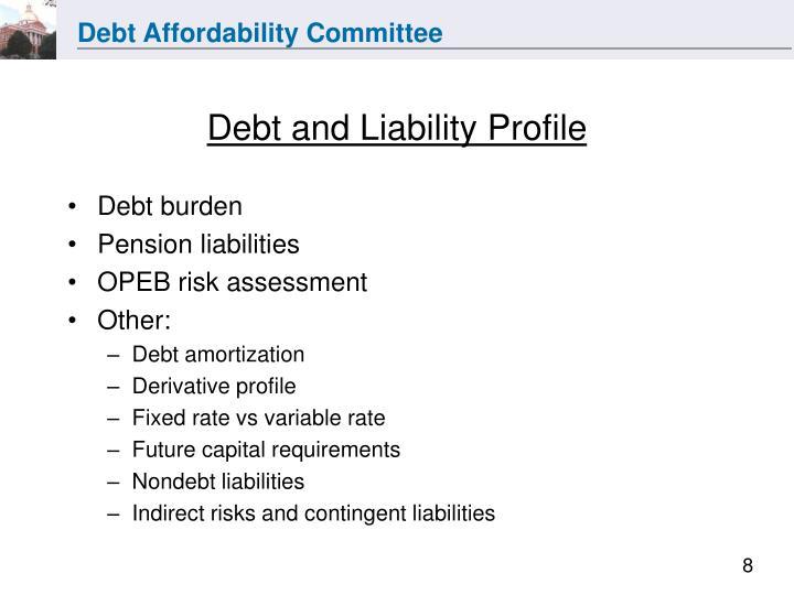 Debt and Liability Profile