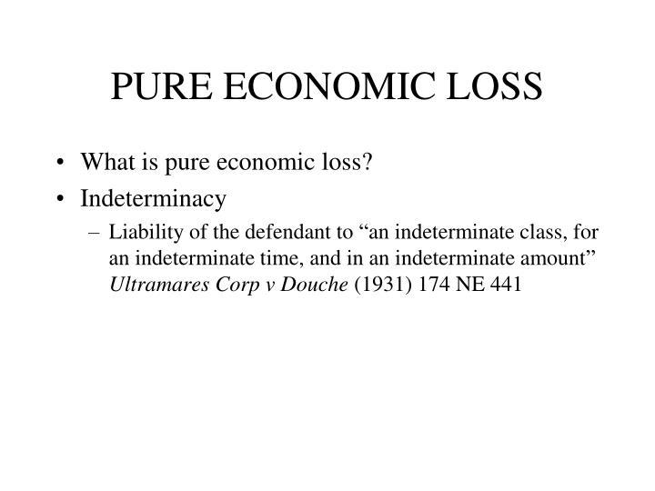 PURE ECONOMIC LOSS