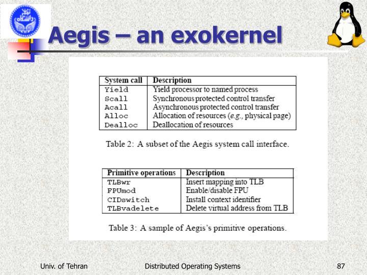 Aegis – an exokernel