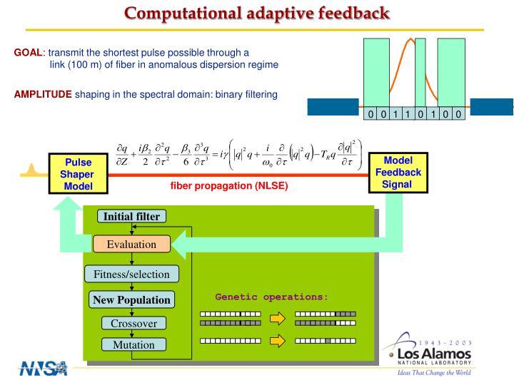 Computational adaptive feedback