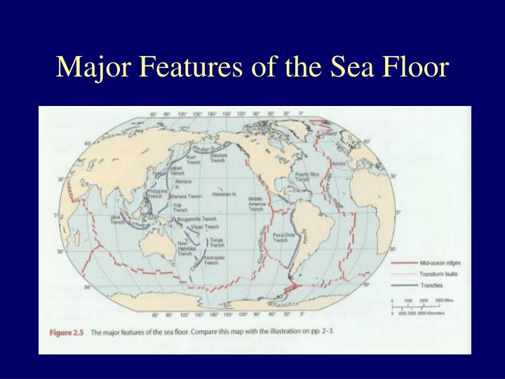 Major Features of the Sea Floor