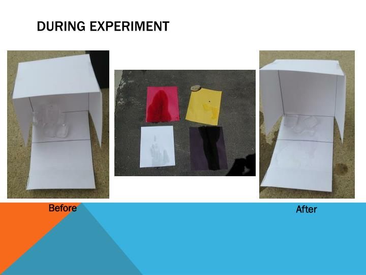 During Experiment