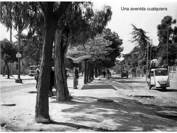 Una avenida cualquiera