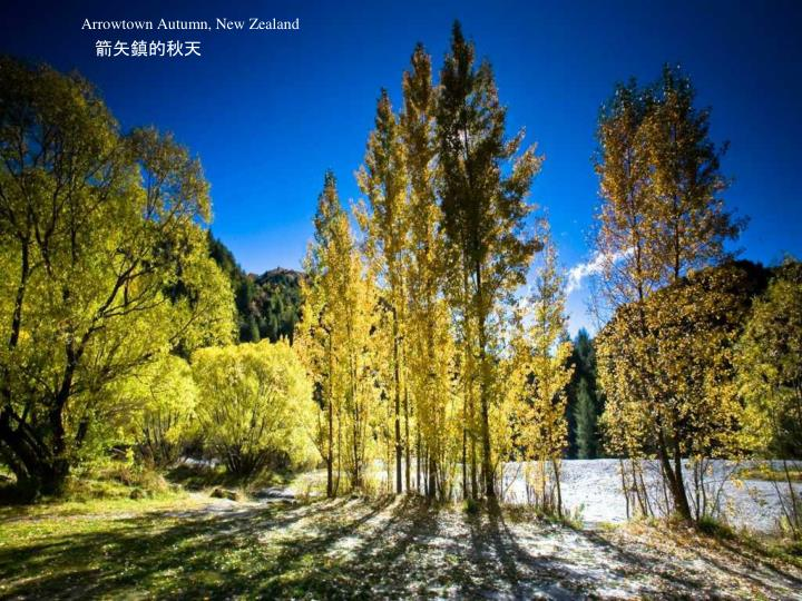 Arrowtown Autumn, New Zealand