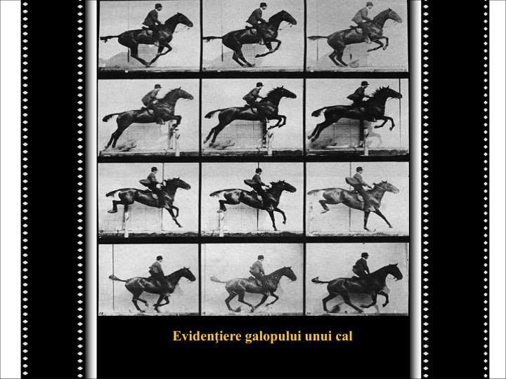 Evidenţiere galopului unui cal