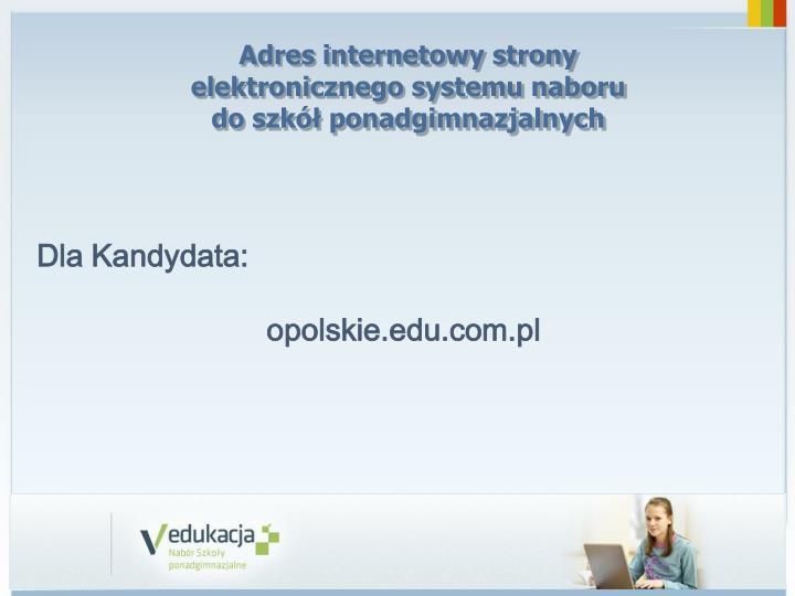 Adres internetowy strony elektronicznego systemu naboru