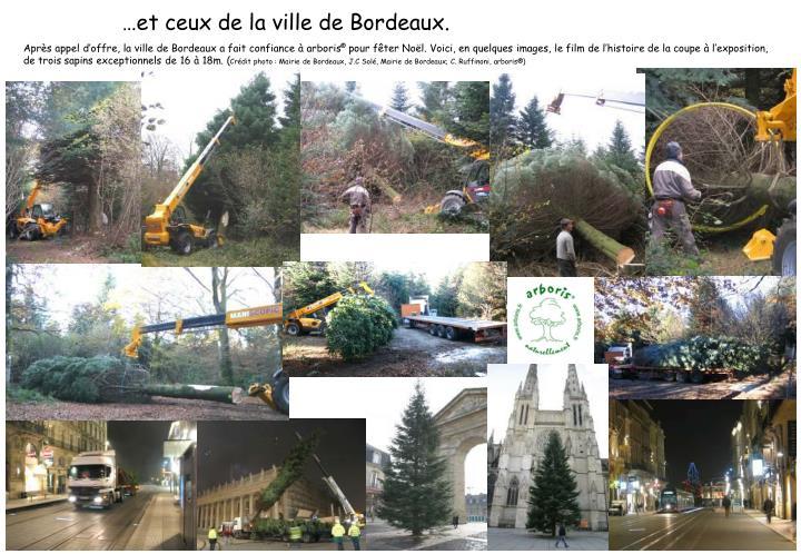 Après appel d'offre, la ville de Bordeaux a fait confiance à arboris