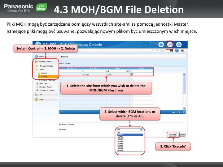 4.3 MOH/BGM File Deletion