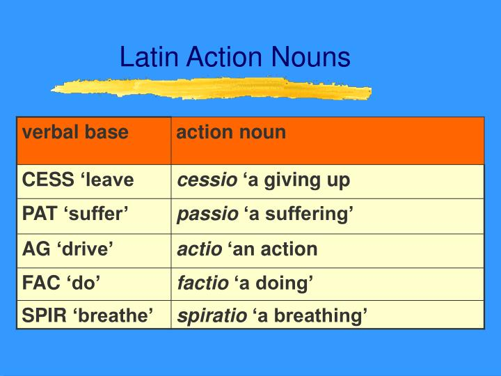 Latin Action Nouns