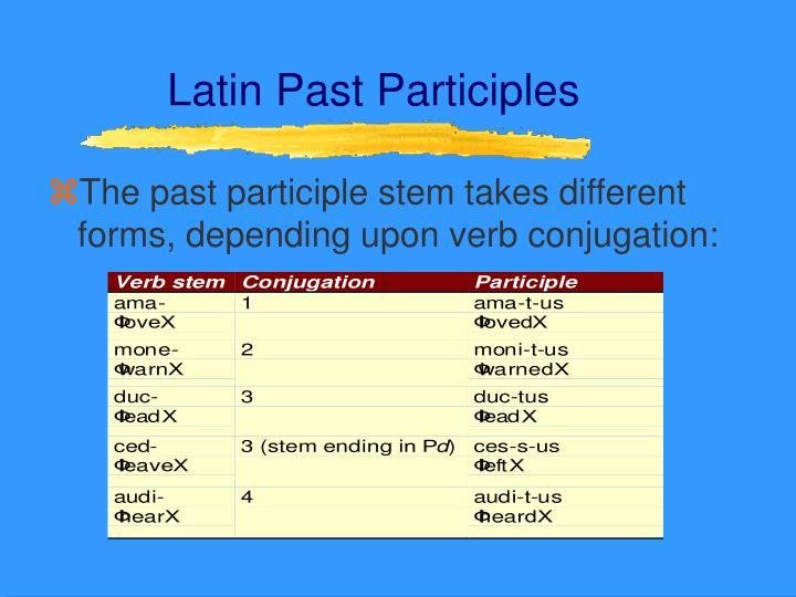 Latin Past Participles