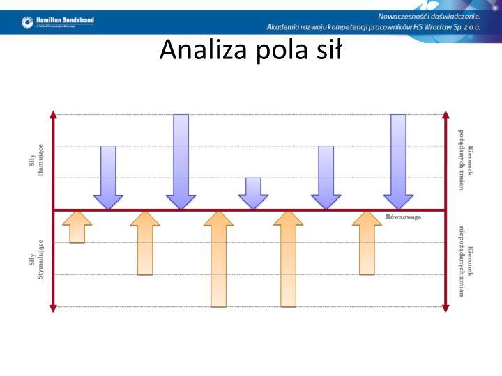 Analiza pola sił
