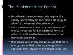 the subterranean forest