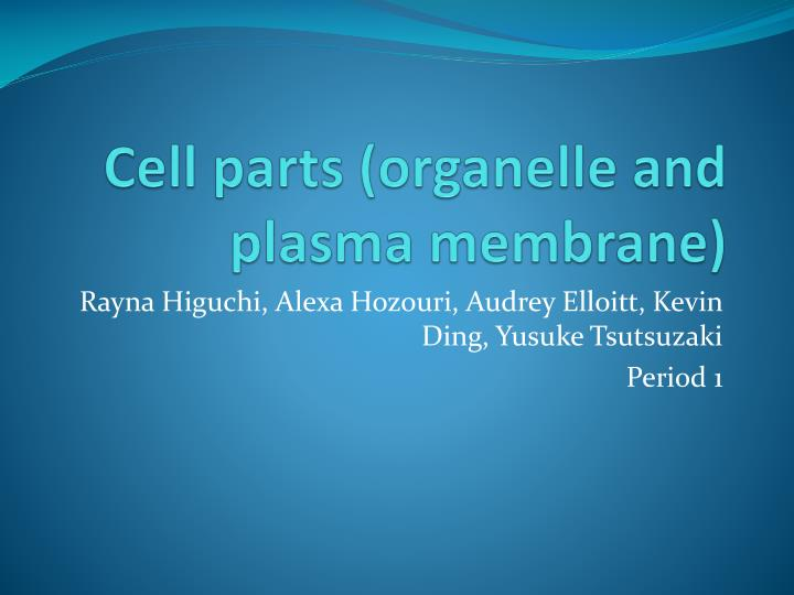 Cell parts (organelle and plasma membrane)