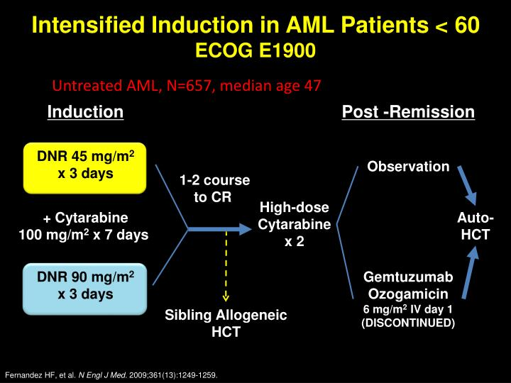 Intensified Induction in AML Patients < 60