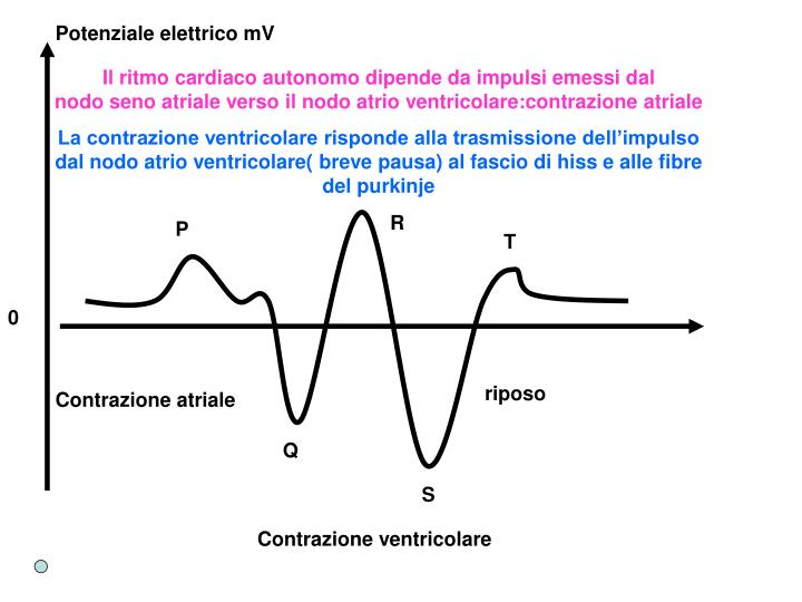 Potenziale elettrico mV