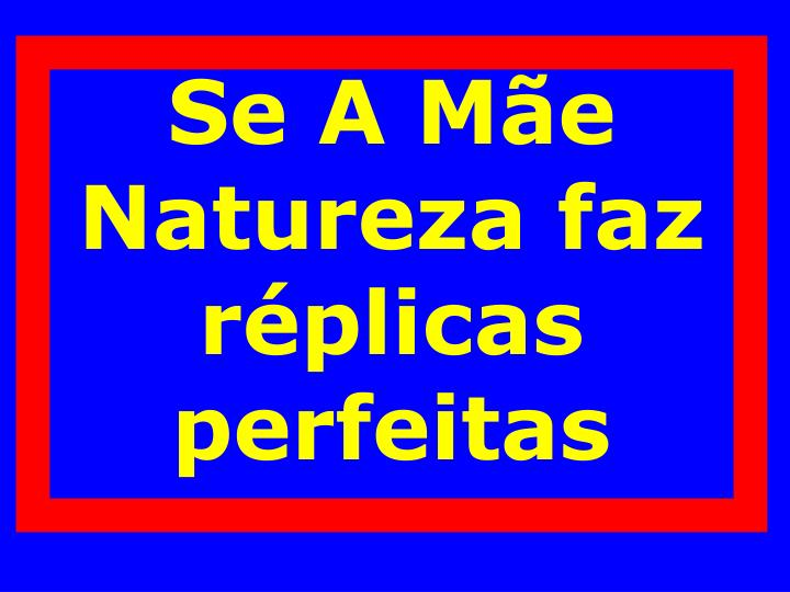 Se A Mãe Natureza faz réplicas perfeitas