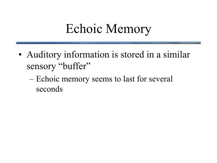 Echoic Memory