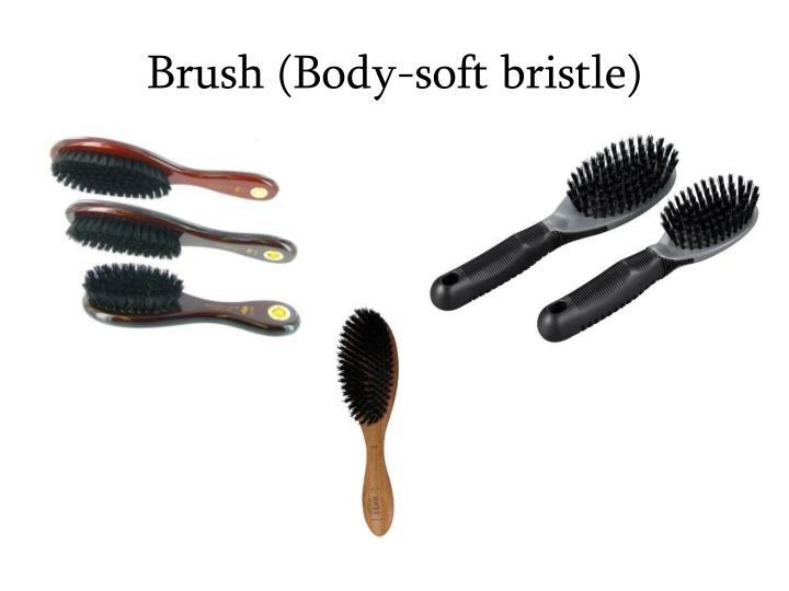 Brush (Body-soft bristle)