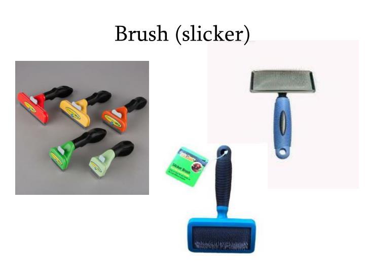 Brush (slicker)
