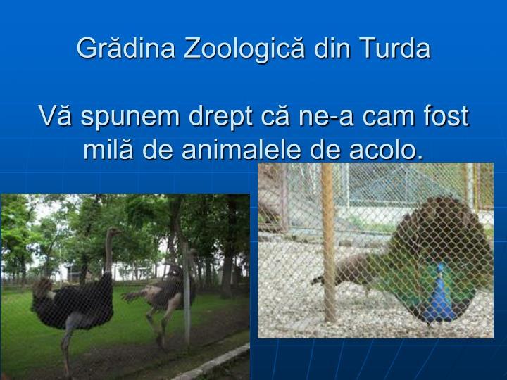 Grădina Zoologică din Turda